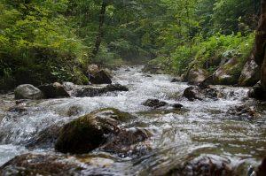Apa în defileu - simbol al lui Tao
